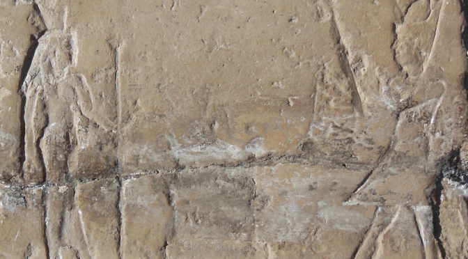 What's new on Arsinoe II: A review of research in 2013
